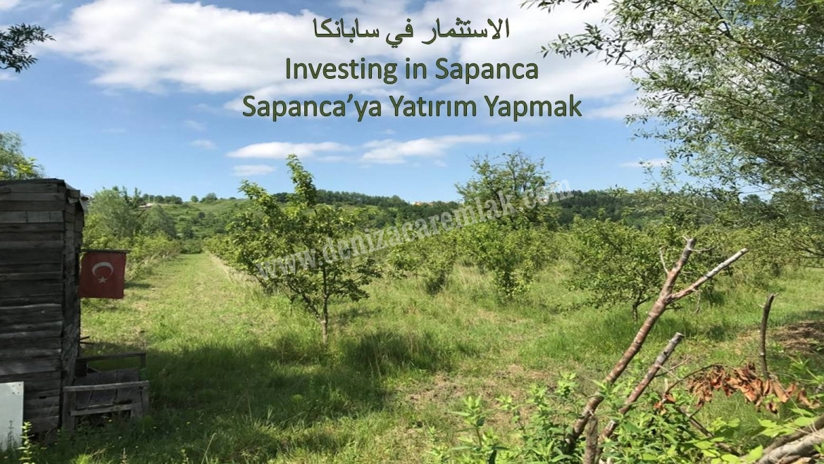 Kocaeli Kartepe Near Sapanca Lake Land For Sale